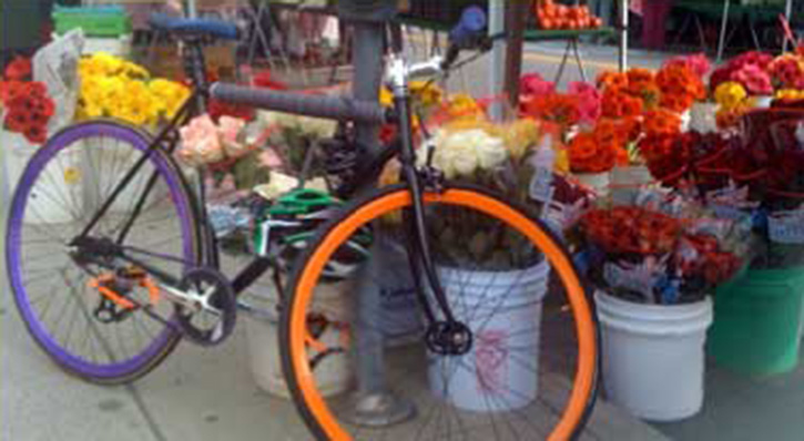 Bike_and_Flowers
